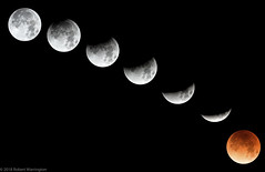 Phases of Eclipse (rwarrin) Tags: moon supermoon superbluebloodmoon sky eclipse lunar blood red arizona nikon flagstaff