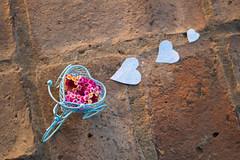 Cenital (Letua) Tags: corazones triciclo hearts myheartwillgoon ctt flickrfriday