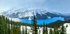 Peyto Lake, Banff National Park (aud.watson) Tags: canada alberta canadianrockies banffnationalpark nationalpark park reserve mountain mountains valley valleys mountainside glacier icefieldsparkway route93 bowsummit bowpass watershed improvementdistrictno9 ca peytolake peytoglacier glacialvalley lake glaciallake meltwater glacialmeltwater glacialerosion erosion silt moraine glacialsediment glacialrocks rockflour ice snowing forest wood woodland tree trees conifers pines pine spruce fir firs landscape
