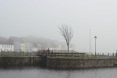Freezing Fog (mcginley2012) Tags: fog mist galway ireland canal terrace tree lamppost urban winter freezingfog thelongwalk street bridge sky water