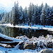 Spring Snow, Tioga Lake, Yosemite 2015