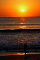 MORNING WALK (R. D. SMITH) Tags: dawn ocean beach dog sand sunrise morning florida water walk surf atlanticocean sun sky melbourneflorida brevardcountyflorida canoneos7d sigma24105artlens