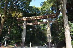 DSC_4522 (ⓥⓘⓣⓐ) Tags: 1117東京 明治神宮 day11