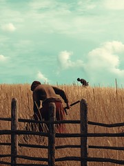 Pastoral (IIron_Star) Tags: the witcher 3