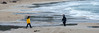0062-2 Paysages Peschici 29.12.2017_DSC2693 (RenzoElvironi) Tags: beach beaches landscape landscapes paesaggi paesaggio paysage paysages plage plages spiaggia spiaggie peschici puglia italie