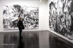 Laurie Anderson @ Mass Moca (ZUCCONY) Tags: 2018 massmoca ma museum bobby zucco bobbyzucco pedrozucco art arte mural yesstreetart