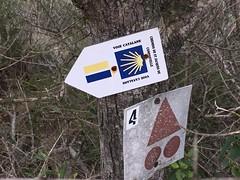 Chemin de Saint Jacques de Compostelle