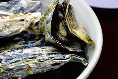 DSC00051 (muzina_shanghai) Tags: 牡蠣 蒸し牡蠣 oyster