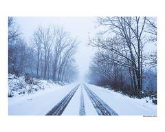 (david Ramalleira) Tags: davidramalleiraphotography davidramalleira d700 nikon invierno winter nieve snow landscape landscapes paisaje paisajes spain españa guadalajara naturaleza natureart naturephotography naturesfinest naturesart