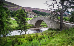 Steep bridge (RIch-ART In PIXELS) Tags: bridge gairnshiellodge river riverside water stones grassland grass heather road scotland highmoors thehighlands hillside hill foothill landscape cairngormsnationalpark unitedkingdom tree viaduct mountain