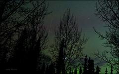 Iridium Satellite Flare and Vega (Katy on the Tundra) Tags: iridiumsatellite iridium satellite vega star auroraborealis aurora northernlights