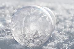 Diamonds and pearls (TribeChristal´s) Tags: lumi pakkanen soapbubble saippuakupla winter talvi snow sony sonyilce7rm2 minolta minolta100mm macro macrophotography kuopio finland ice frost bubble snowflake cold sonyalpha