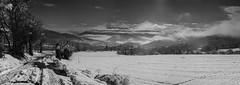 Après la tempête (imaginamateur) Tags: landscape fau 6x6 trièves nuages brume fujifilmacros100professional obiou moyenformat montagne rolleiflex35 hiver paysage roissard argentique isère blackwhite campagne neige