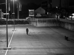 Walking the dog, standing the human (un2112) Tags: budapest blackandwhite monochrome bw humansofbudapest evening g80 dog parkinglot shopmark