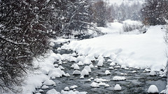 L'Onde enneigée (watbled05) Tags: neige ruisseau arbres rochers hautesalpes massifdesecrins vallouise