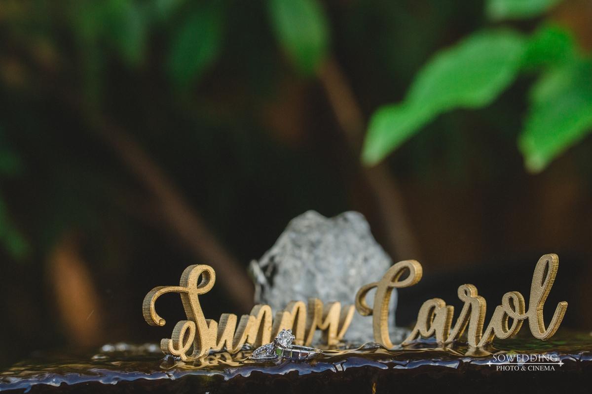 2017Jun16CarolSunny-HighlightHD-335