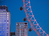 New Neighbours (Alan Habbick Photography.) Tags: londoneye southbank bluehour