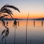 Morning Glory - Sunrise over Dove Elbe thumbnail
