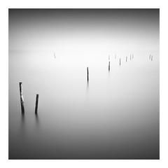 The Outsider (Marco Maljaars) Tags: longexposure seascape sea water ijsselmeer marcomaljaars le blackandwhite bw poles mood fog mist minimalism