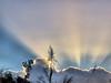 Sunburst 20180211 (Kenneth Cole Schneider) Tags: florida miramar westmiramarwca
