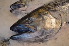 Looks Pretty Fishy!! (Neal D) Tags: washington seattle pikeplacemarket fish salmon