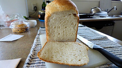 Home-made bread (Sandy Austin) Tags: panasoniclumixdmcfz70 sandyaustin massey auckland food homemade northisland newzealand bread