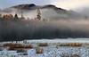 Mist at Dunkeld (PJ Swan) Tags: dunkeld scotland perthshire mist trees woodlands forest winter fog magicmoments
