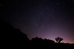Joshua Tree - 01.20.2018 (Kimihiro-kun) Tags: joshuatree national park astrophotography longexposure landscape california outdoor astronomy