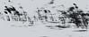 Roseaux dans le vent (lionel76lh) Tags: marais roseaux vent