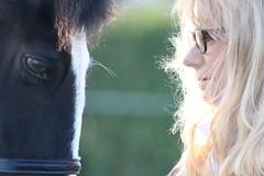 Love by Julie Adams (julz.adams) Tags: feelings horses horse eyes together love real