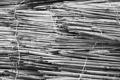 Once a barrier... (Djaron van Beek) Tags: texture pattern bw blackandwhite pile garbage oldfencesofreed thread reed stemstiedtogether beautyofdecay weathered neglected alotofpieces monochrome minimal repetitions lines manylines material organic bulkywaste depthoffield dof fullscreen apparentmovements heap abitchaotic composition bokeh aesthetic greytones accumulation djaron djaronvanbeek