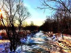 Good Morning from Toronto (shahzad.alvi) Tags: winter flicker pictureoftheday picturetakenfromiphone iphone canada toronto february14
