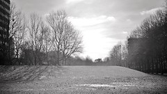 All by myself (farmspeedracer) Tags: bw sky light cold germany 50th 50 february februar scenery silence sunday 2018 peace past