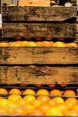 13 Mercadão (faneitzke) Tags: portfolio canon canont5eos1200d canont5 sãopaulo sp sampa brasil brazil brésil américadosul américalatina southamerica latinamerica ameriquelatine latinoamérica americadelsur sudamerica mercadomunicipal mercadão mercado citymarket marché centro centrovelho laranja naranja orange fruits fruit fruta feira groceries grocery