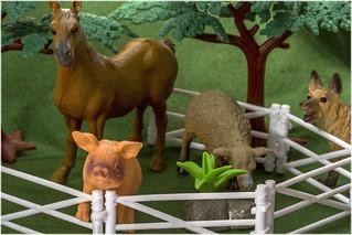 Animal Farm - My Favourite Novel (Explored - 15 Jan 18)