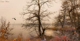 Une fin de journée d'automne
