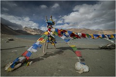 pangong tso lake010 (Fermin Ezcurdia) Tags: pangonglake tibetan himalaya shyokriver indusriver tso changla 4250 pangongtso pangongtsolake chemreymonastery hemismonastery lehpalace somagompa namgyaltsemogompa shantistupa sheymonastery staknagompa thiksemonasterymonastery thikse stakna gompa shey stupa shanti soma namgyal leh hemis chemrey ladakh