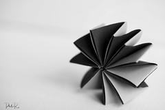 Shades of Grey (PhilR1000) Tags: macromondays paper folded bw blackwhite shadesofgrey