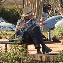 Flutist Sunnyvale Library (safoocat) Tags: 520hs musician flute 91