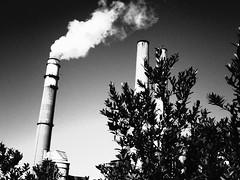 (brotherM) Tags: stacks smoke steam smokestacks powerplant florida apollobeach lores digitalharinezumi manateeviewingcenter teco tampaelectric bigbendpowerstation monochrome blackandwhite