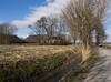 Grijssloot (Jeroen Hillenga) Tags: leens groningen hogeland demarne netherlands nederland landscape landschap boerderij farm platteland countryside blauwelucht bluesky