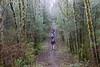 Trail through the alders (rozoneill) Tags: cape mountain berry creek siuslaw national forest hiking oregon florence princess tasha scurvy ridge trail nelson coastal