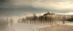 The fog in the hills (rinogas) Tags: italy piemonte langhe novello unesco mist hill winter rinogas