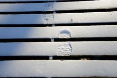 Makin' Tracks (BKHagar *Kim*) Tags: bkhagar snow snowy winter thesouth dock boards footprint track athens al alabama limestonecounty