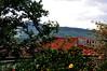 cheiro de mato... (Ruby Ferreira ®) Tags: telhados hibisco montanha céu galhos árvores fazenda farm branches sky montains roofs hibiscus alamanda