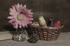 Still Life with Flowers (N.the.Kudzu) Tags: home tabletop stilllife book flowers basket pentaxk3 lightroom