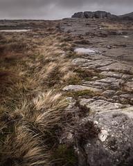 Bite (jellyfire) Tags: distagont3518 landscape landscapephotography rhinogydd sonnartfe55mmf18za sony sonya7r sonyfe70200mmf40goss ze zeissdistagont18mmf35ze autumn granite leeacaster pavement rock snowdonia wales wwwleeacastercom zeiss