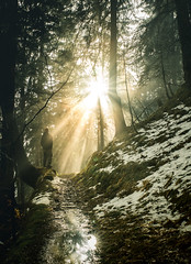 Sunrays (raimundl79) Tags: wow weather wanderlust wald fotographie flickrexploreme flickrr foto fog forest explore exploreme entdecken explorer earth erde tamron2470mm 7dwf 2470mm d800 digital vorarlberg view image instagram österreich photographie perspective portrait people austria landschaft lightroom landscape ländle lichtspiel myexplorer montafon nikon nikond800 new nebel bestpicture beautifullandscapes