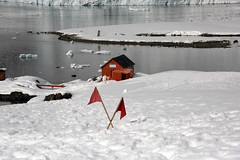 Brown_2017 12 11_3102 (HBarrison) Tags: harveybarrison hbarrison antarctica antarcticpeninsula paradiseharbor brownstation arctic antarctic arcticantarctic