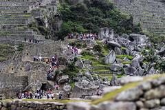 Machu Picchu 124